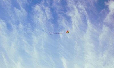 vlieger